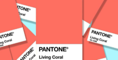 THE LUX LIST: Pantone Colour of the Year 2019