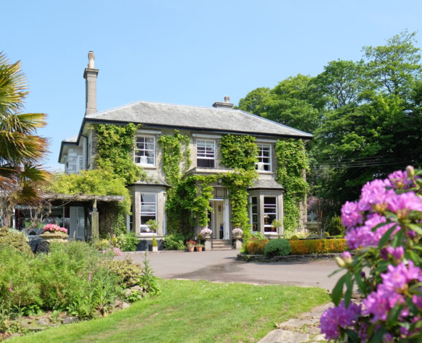 Devon: the best Spots for the perfect quirky getaway