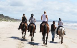 Escape to Byron's newest destination – North Beach Byron Bay