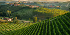 "NEW Chef-Led ""Slow Food"" Tour of Piedmont, Italy"