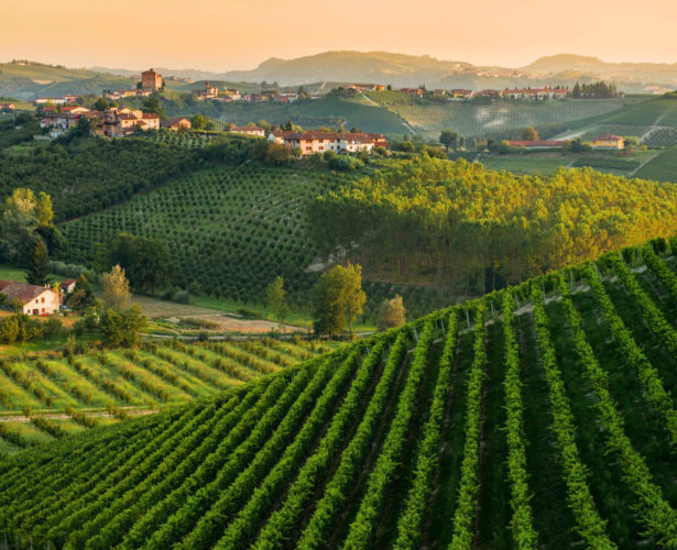 """NEW Chef-Led """"Slow Food""""Tour of Piedmont, Italy"""