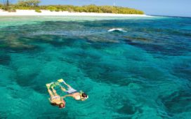 Great Barrier Reef eco-resort to reopen mid-June with strict safety plan