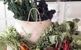 Learn how to grow your own edible garden at Springfield Farm Retreat
