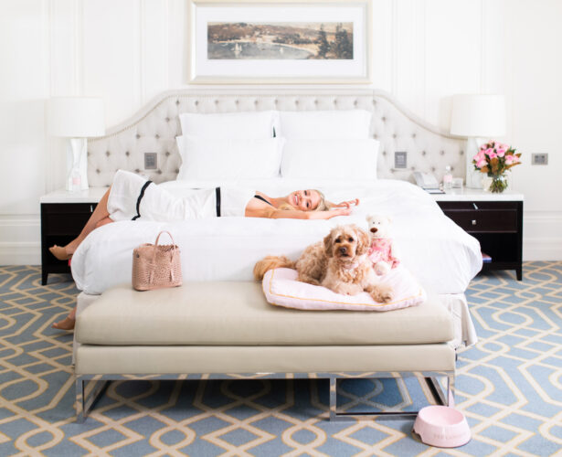 Pamper your furry friend with The Langham Sydney Pets Staycation package
