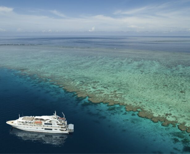 12 reasons to visit Cairns and the Great Barrier Reef