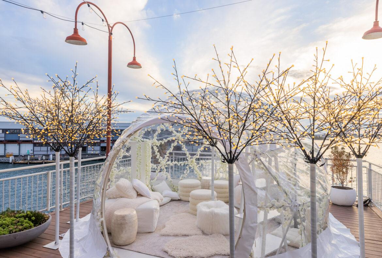 Enjoy the Cherry Blossom Wonderland Igloo at Pier One Sydney