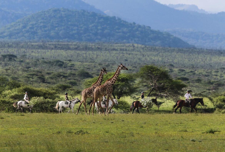 Saddle Up at ol Donyo Lodge, Kenya for a bucket list horse safari