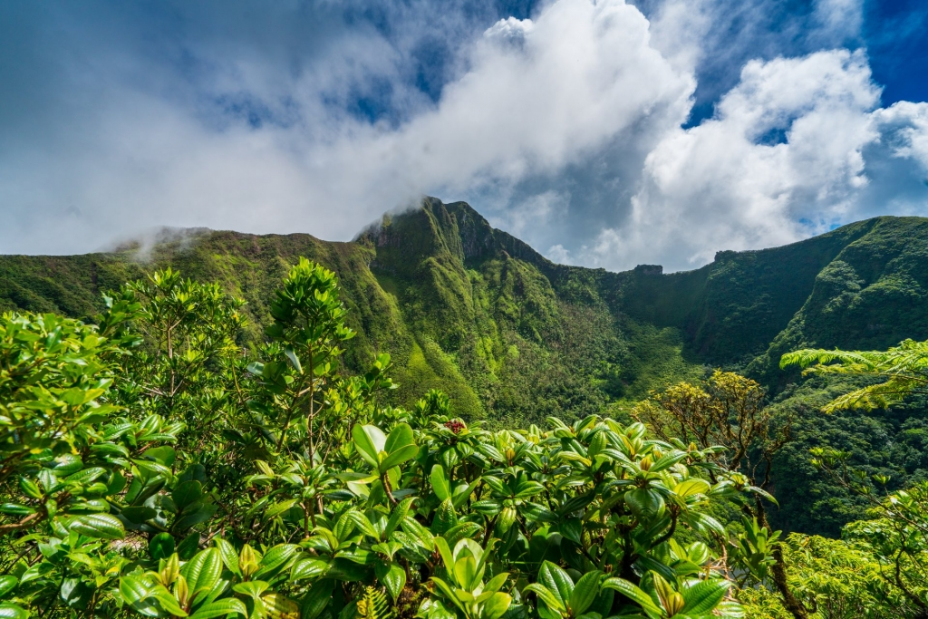 Hiking in the Caribbean